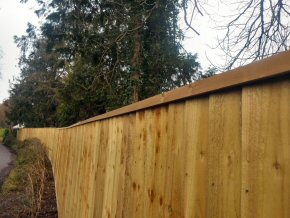 Close board fencing in Exeter