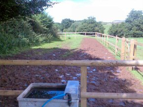 Half round stakes – equestrian fencing in Wellington.